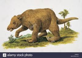 Palaeozoology - Pleistocene - Megatherium (art work by Philip Hood Stock  Photo - Alamy