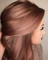Hairstyle Color the 25 best 2017 hair color trends ideas fall hair 6811 by stevesalt.us