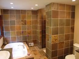 Walk In Shower without Door in Recent | HomesFeed