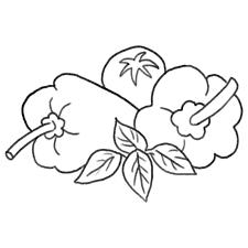 買い物 ちょっぴり個性的な商用ok無料イラスト素材 The Drawers