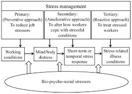 Stress Management Chart Stress Management flow chart Stress Management Pinterest 1