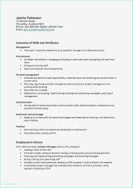 95 It Project Manager Resume Jscribes Com