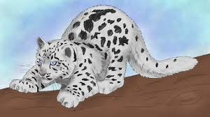 Cute Leopard Coloring Pages With Baby Leopard Drawing How To Draw A