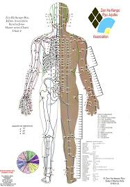 Acupuncture Point Chart Free Free Printable Pressure Point Charts