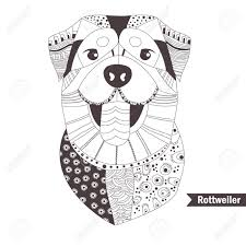 Rottweiler Coloring Book For Adult Antistress Coloring Pages Hand Drawn Vector Isolated Illustration On White Background Henna Mehendi Tattoo