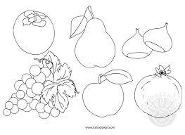 Eccezionale Disegno Semplice Autunno Frutta Da Colorare Migliori