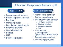 16 roles and responsibilities are split business pmo pmo responsibilities
