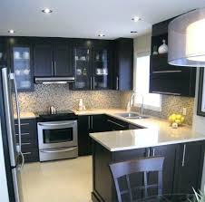 kitchen designs for small kitchens galley kitchen ideas for small kitchens small kitchens designs amazing kitchen cabinets kitchen design ideas small galley