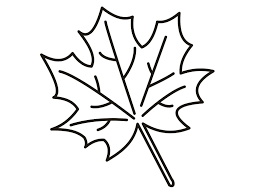 Small Picture various leaf shapes autumn leaves in autumn coloring page color