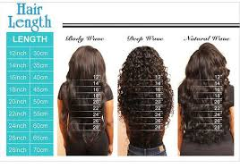 Hair Length Chart Hair Theme