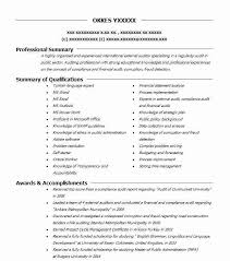 Auditing Resumes External Auditor Objectives Resume Objective Livecareer