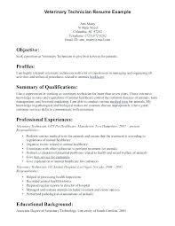Sample Technical Resumes Automotive Technician Resume Sample Sample ...