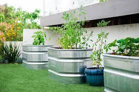 12 tips to help you start an edible garden
