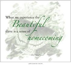 John O Donohue Beauty Quotes Best of From The Book Beauty By John O'Donohue Favorite Quotes