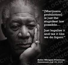 Morgan Freeman Quotes Fascinating 48 Best Morgan Freeman Quotes WeNeedFun