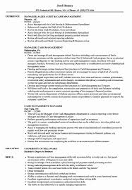 Sample Access Management Resume Sample Access Management Resume Elegant Sample Access Management 23