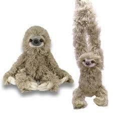 sloth stuffed pack of 2 wild republic