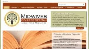 ethics in midwifery essays  ethics in midwifery essays