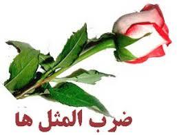 Image result for ضرب المثل های فارسی و معنی آنها