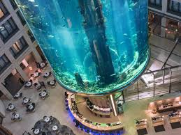 Underwater hotel Abu Dhabi Drink Up At The Atrium Bar Where Over 1500 Tropical Fish Swim Overhead Pursuitist Unforgettable Underwater Hotels Bookingcom