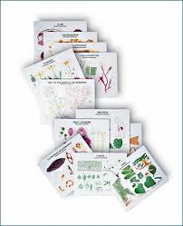 Biology Charts And Posters Complete Biology Chart Series Rollers