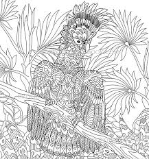 Cockatoo Parrot Coloring Pages Order Coloring Books And Notebooks