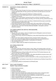 Media Producer Sample Resume Multimedia Producer Resume Samples Velvet Jobs 20