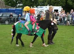 Pony Costume Ideas Fancy Dress Nettynot Craft