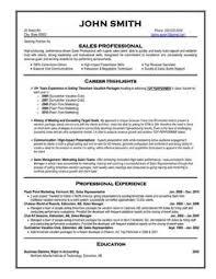 Best Professional Resume Format Adorable Sales Professional Resume Samples Winsome Design Examples Amazing