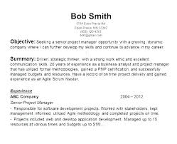 Examples Of Strong Resumes Best Strong Resume Objective Statements Universitypress