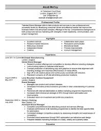 Coo Resume Template Audit Operation Manager Resume Archaicawful Construction And 98