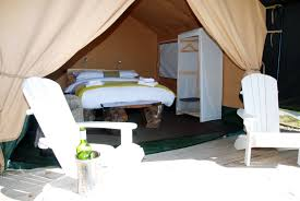 Go Glamping In Ireland Find The Best Spots Around The CountryTreehouse Accommodation Ireland