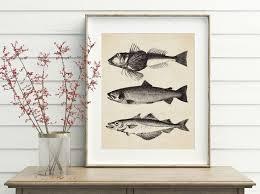 fish decor for classroom bathroom