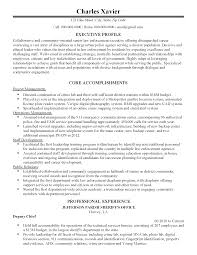 resume templates senior law enforcement executive senior attorney resume
