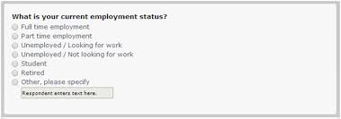 Questions About Employment Using Demographic Questions In Surveys For In Depth Data Analysis