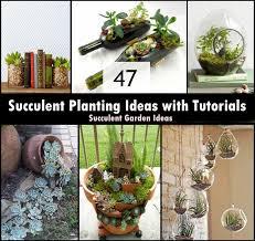 Indoor Garden Design Ideas Amazing 48 Succulent Planting Ideas With Tutorials Succulent Garden Ideas