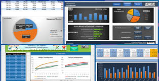 Flash Charts In Excel Complete List Of Things You Can Do With Excel Someka Net