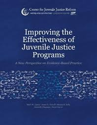 improving the effectiveness of juvenile justice programs a new  interventions for juvenile offenders should alter their behavior in ways that reduce their delinquency and improve their chances to prosper as productive