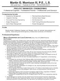 vp engineering and land surveying resume - Land Surveyor Resume Sample