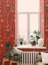 Wild Rosa Chinensis - India Crimson ...
