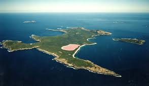 lake. the shores of lake hillier are surrounded by crusts salt deposits via bizarre necessities