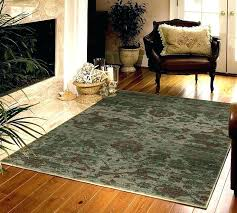target threshold area rugs com thick pile