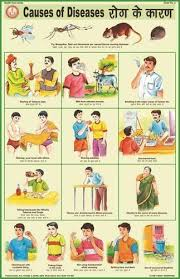 Causes Of Diseases For Health Hygiene Chart