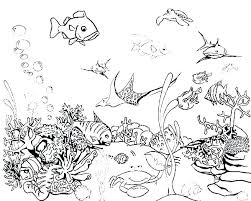Coloring Pages For Fish Navenbyarchaeologygrouporg