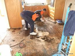 removing glue from an old tasmanian oak floor in frankston