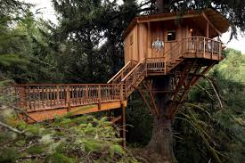 treehouse masters. \u0027Treehouse Masters\u0027 Can Help You Build Sweet Abodes Like This Treehouse Masters