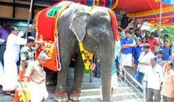 "essay on elephantessay on elephant in sanskrit   essay topics गà¤� "" sanskrit essay"