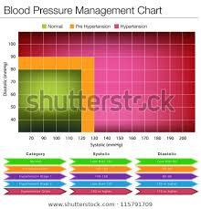 Blood Pressure Diagram Image Blood Pressure Management Chart Stock Vector Royalty Free
