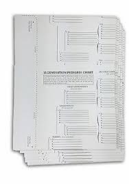 15 Generation Pedigree Chart Treeseek 15 Generation Pedigree Chart 10 Pack Blank