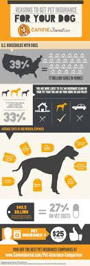 reasons to get pet insurance infographic